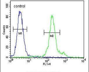 FBXL14 Antibody (PA5-25144) in Flow Cytometry