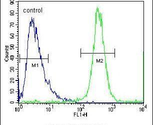 FBXO2 Antibody (PA5-23718) in Flow Cytometry