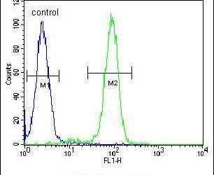 FBXO9 Antibody (PA5-25475) in Flow Cytometry