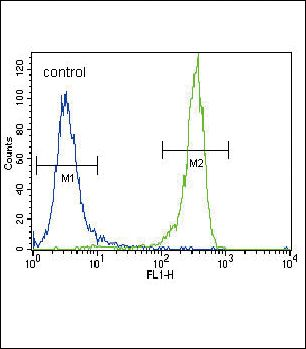 FGFR2 Antibody (PA5-14653) in Flow Cytometry