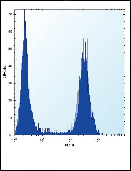 FGFR2 Antibody (PA5-14654) in Flow Cytometry