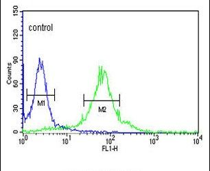 FKBP2 Antibody (PA5-13690) in Flow Cytometry
