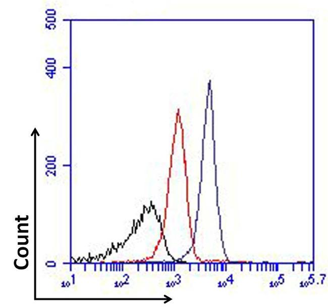 FOXP1 Antibody (MA5-17079) in Flow Cytometry