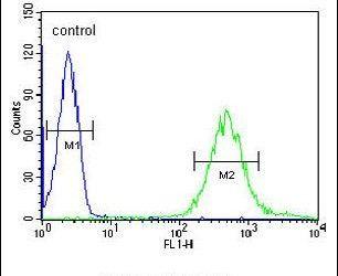 FUT6 Antibody (PA5-24850) in Flow Cytometry