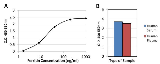 Ferritin Antibody (MA5-14693) in ELISA
