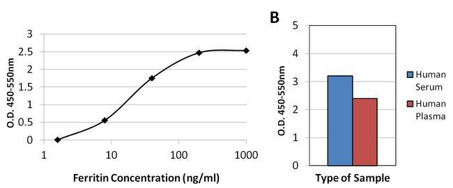 Ferritin Antibody (MIF2505) in ELISA