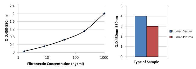 Fibronectin Antibody (MIF2601) in ELISA