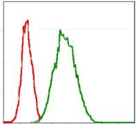 G6PD Antibody (MA5-15921) in Flow Cytometry