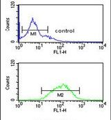 GABRG3 Antibody (PA5-24729) in Flow Cytometry