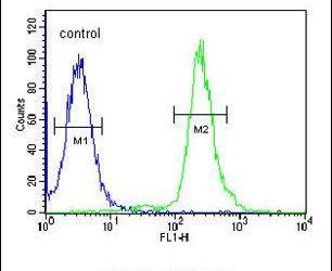 GBP7 Antibody (PA5-24834) in Flow Cytometry