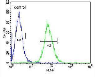 GGNBP2 Antibody (PA5-25284) in Flow Cytometry