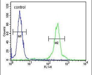 GLT8D2 Antibody (PA5-24656) in Flow Cytometry