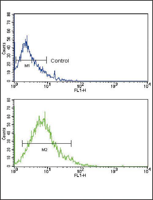GLUT2 Antibody (PA5-11567) in Flow Cytometry