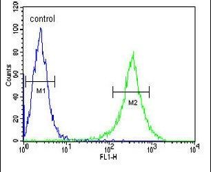 GNE Antibody (PA5-25238) in Flow Cytometry