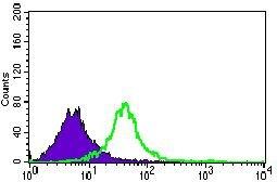 GNL3 Antibody (MA5-17082) in Flow Cytometry