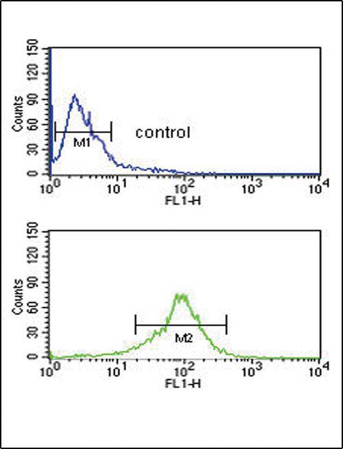 GOT1 Antibody (PA5-24634) in Flow Cytometry