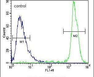 GPAM Antibody (PA5-23659) in Flow Cytometry