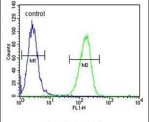 GSTO2 Antibody (PA5-25736) in Flow Cytometry