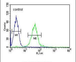 GTPBP2 Antibody (PA5-23726) in Flow Cytometry