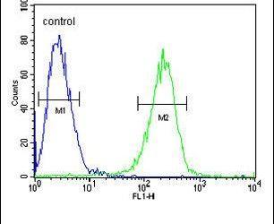 HADHB Antibody (PA5-26858) in Flow Cytometry