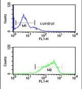 HAS2 Antibody (PA5-25593) in Flow Cytometry