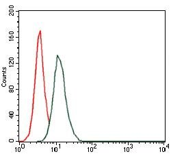 HAS3 Antibody (MA5-17088) in Flow Cytometry