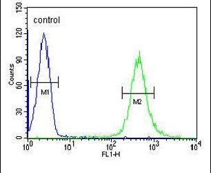 HOXA3 Antibody (PA5-26887) in Flow Cytometry