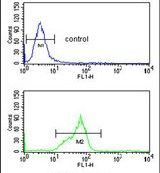 HOXC6 Antibody (PA5-25156) in Flow Cytometry