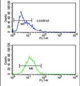 Hemopexin Antibody (PA5-13605) in Flow Cytometry