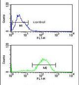 HSD11B2 Antibody (PA5-26767) in Flow Cytometry