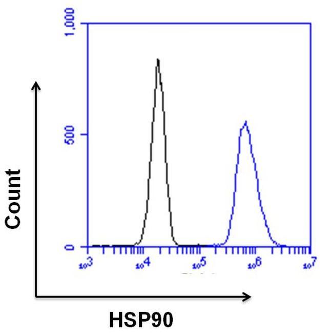 HSP90 beta Polyclonal Antibody