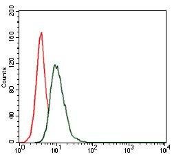 HSP90 alpha Antibody (MA5-17091) in Flow Cytometry