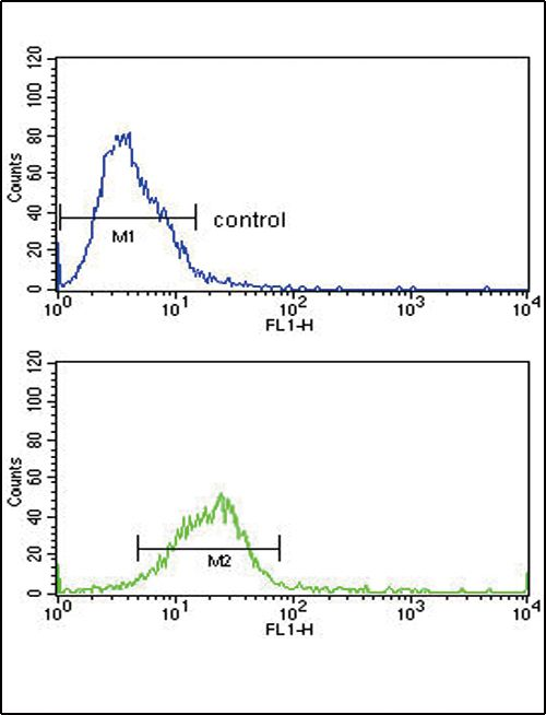 HSC70 Antibody (PA5-24624) in Flow Cytometry