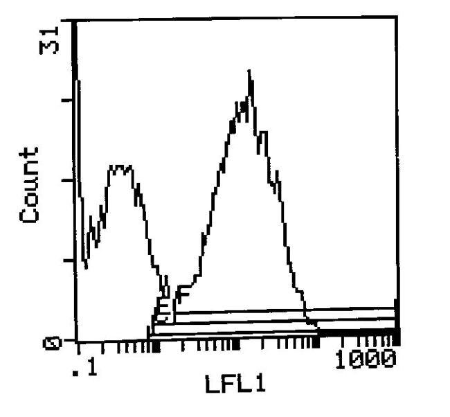 I-Ek Antibody (MA1-70066) in Flow Cytometry