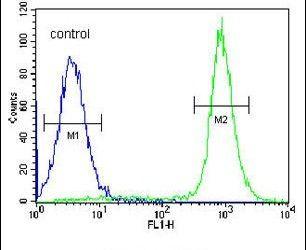 IBTK Antibody (PA5-24224) in Flow Cytometry