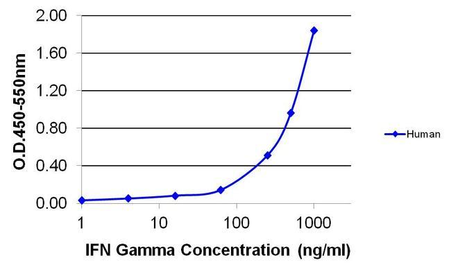 IFN gamma Antibody (MM700B) in ELISA