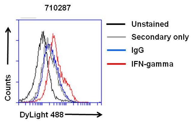 IFN gamma Antibody (710287) in Flow Cytometry