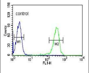 J Chain Antibody (PA5-13486) in Flow Cytometry