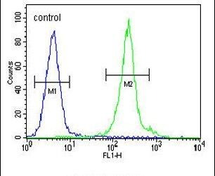 IL-12 p40 Antibody (PA5-23965) in Flow Cytometry