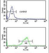 IL5RA Antibody (PA5-25159) in Flow Cytometry