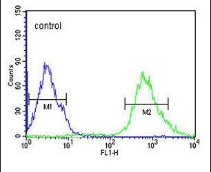 Importin 9 Antibody (PA5-25477) in Flow Cytometry