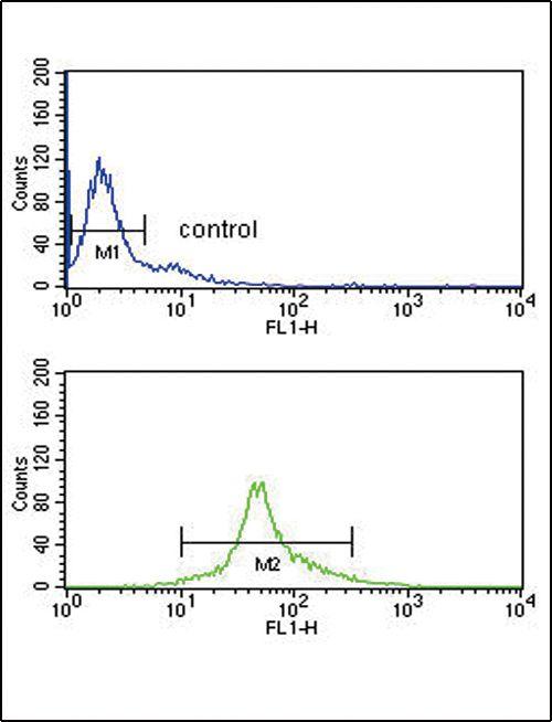 IRF5 Antibody (PA5-12437) in Flow Cytometry