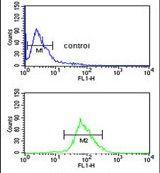 ISLR Antibody (PA5-24804) in Flow Cytometry
