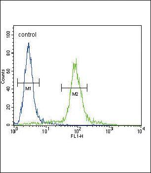 ITGA11 Antibody (PA5-23897)