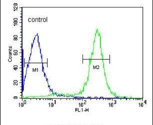 ITIH2 Antibody (PA5-13670) in Flow Cytometry