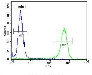 JHDM1D Antibody (PA5-25040) in Flow Cytometry