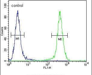 JOSD2 Antibody (PA5-24098) in Flow Cytometry