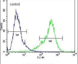 KIAA1609 Antibody (PA5-24016) in Flow Cytometry