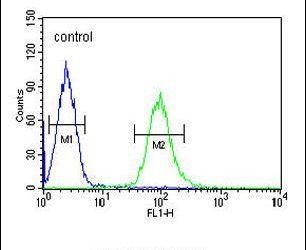 KATNAL1 Antibody (PA5-23735) in Flow Cytometry