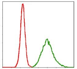 KCNQ1 Antibody (MA5-17105) in Flow Cytometry